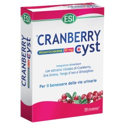 ESI Cranberry Cyst ovalette